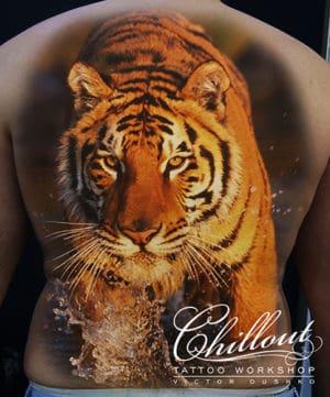 Эскиз тату Тигр